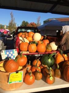 Pumpkins-IMG_1535