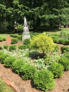 IMG_2721 (1)-herb garden
