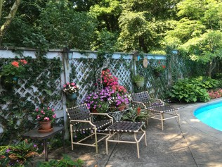 Webb pool garden