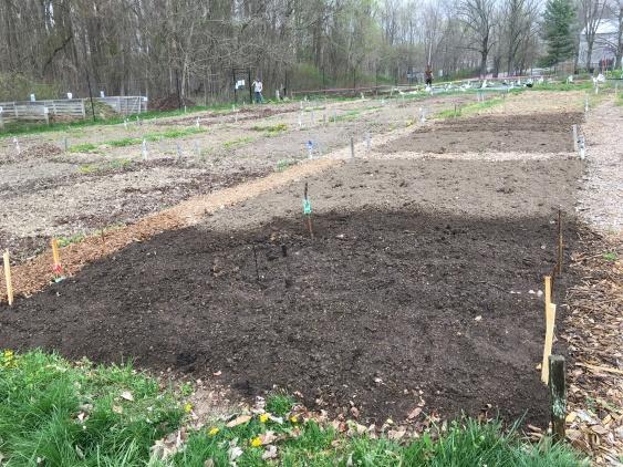 Garden just planted